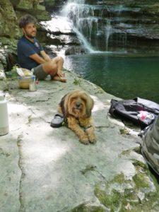 Stella alla cascata Rovigo