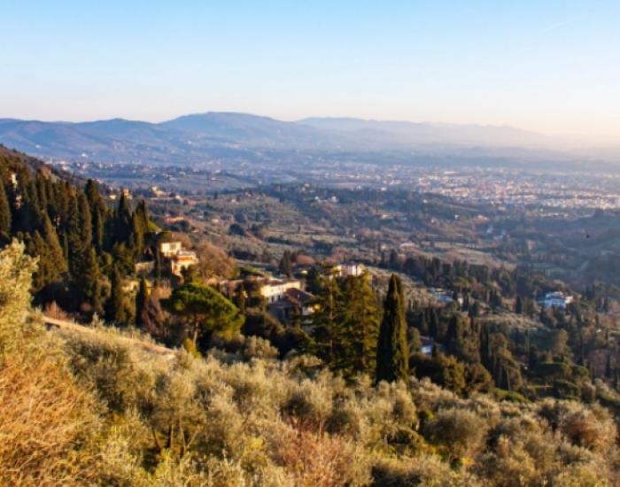 vista dalle colline